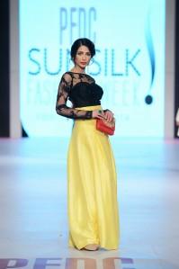 Zara Shahjahan 13-4-14 (420)