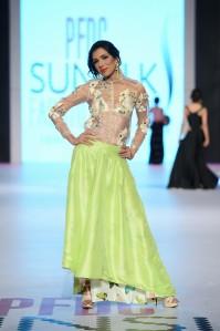 Zara Shahjahan 13-4-14 (530)