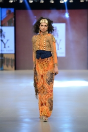 HSY (54)